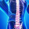 Cette boisson fera disparaître vos douleurs à la colonne vertébrale, au dos et aux jambes !