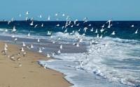 La vie, comme l'eau de mer...