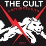 the-cult-81