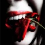 rose_noire21