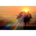 sunrise4ever