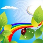 rainbowlsadybird