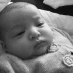 Porte bébé chicco