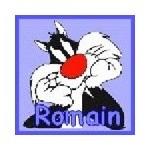 romain3646