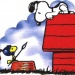 lostsnoopy