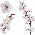 ladyflowersbijoux