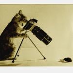photographie-54