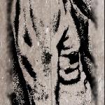 marmotus