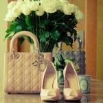 pastel_daisy