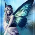 _mariposa_