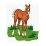 yearling-alpha