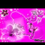 hibiscus-80