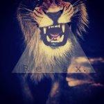 tigrea_5