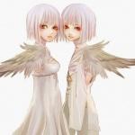 mesld-anges