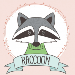 La Raccoon