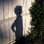shadowmik