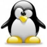 pingouin0