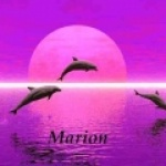 marion29200