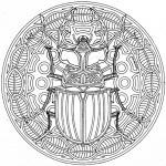 scarabet33