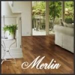 merlin2010
