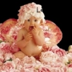 bebeorion