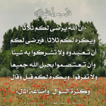 ali-soufybekakra