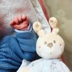 Liliii-en-attendant-bébé