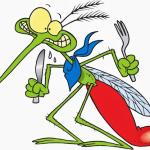 Avatar de mosquitto007