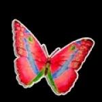 papillontriste