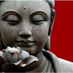 bouddhe