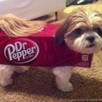 docteur-pepper