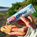 longyearbyen-lover