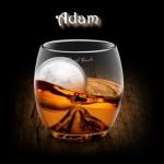 adam_35