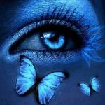 Avatar de PapillonNuitBleu
