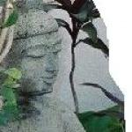 jesanvye