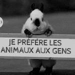 Avatar de Bibouille54