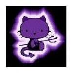 lil-kitty