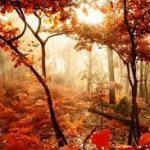 est-automne3-0