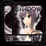 shadownet