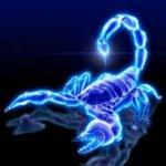 scorpion_bleu