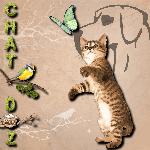chat-doz