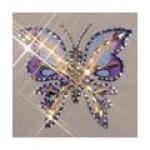 papillon86