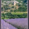 provencale2