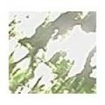 anslinger
