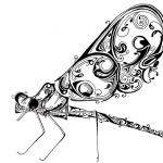 libellulebla