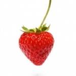 fraisedujardin