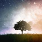 Avatar de cosmos94
