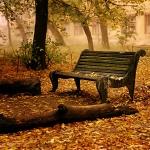 chant-automne