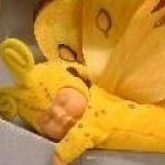 croquettes-au-miel
