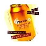 punch13